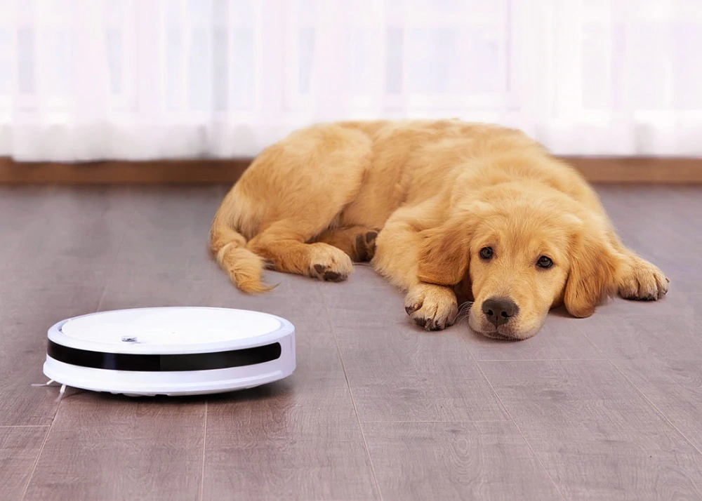 Enter the world of robot vacuum cleaners for only 139 euros thanks to this new offer of the Xiaomi Xiaowa Vacuum Lite
