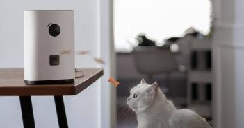 Nueva cámara vigila mascotas con lanzador de premios. Noticias Xiaomi Adictos