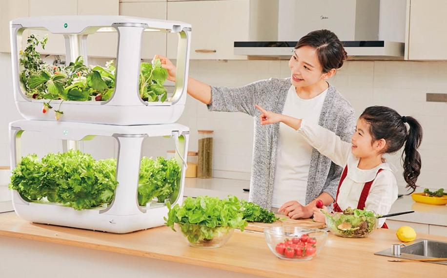 Invernadero doméstico Xiaomi. Noticias Xiaomi Adictos