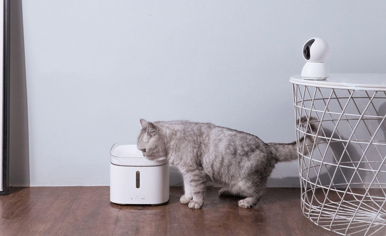 El primer dispensador de agua para mascotas de Xiaomi se venderá este 25 de septiembre