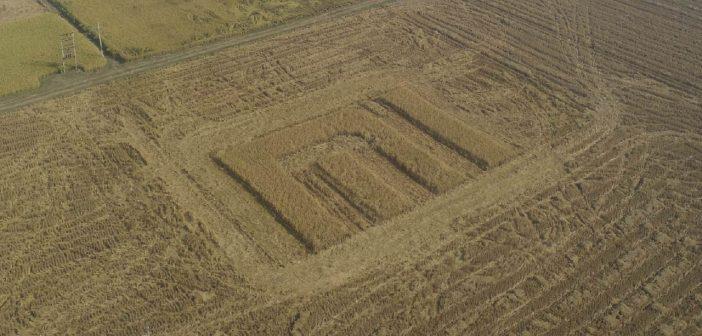 El logo de Xiaomi aparece por todo lo grande en una granja agrícola. Noticias Xiaomi Adictos
